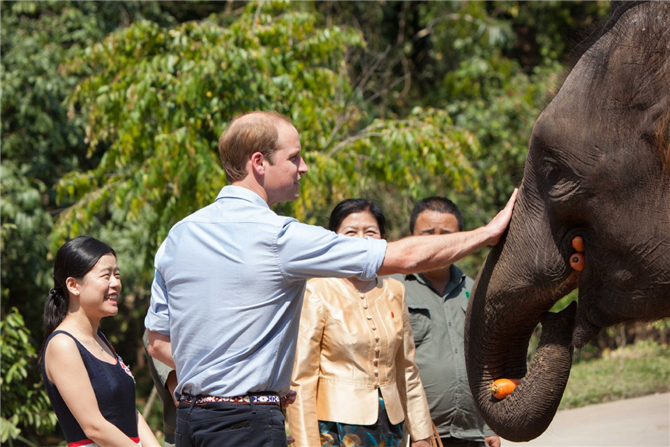 Prince William, Britain's Duke of Cambridge, visited the Asian Elephant Breeding and Rescue Center in 2015