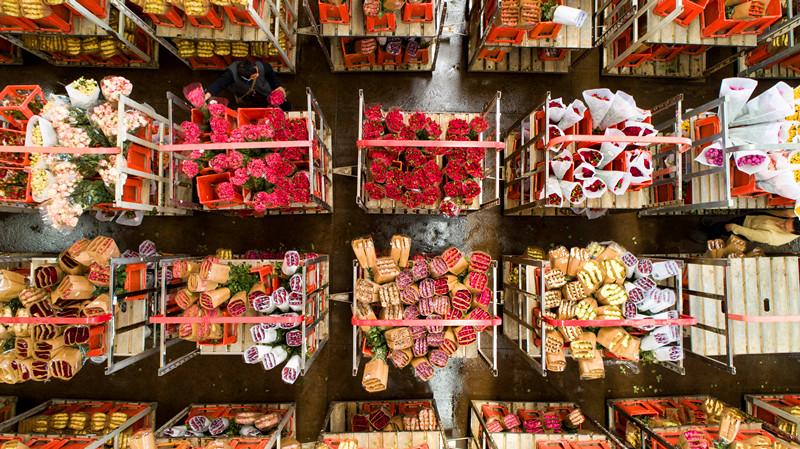 Dounan Flower Market in Kunming