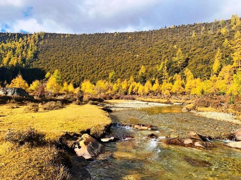 Quzonggong area in Baima Snow Mountain in Diqing, Yunnan