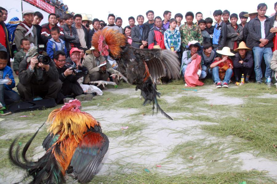 Merry folk activities to happen in Eshan County