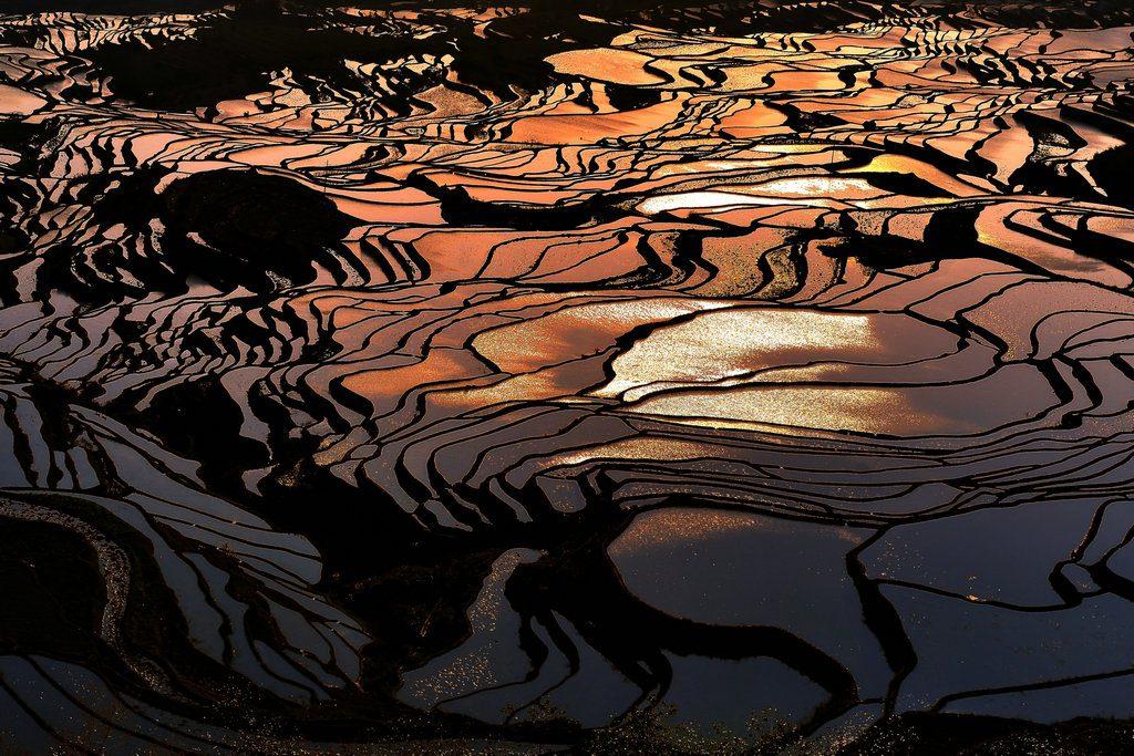 Yuanyang Hani Rice Terraces
