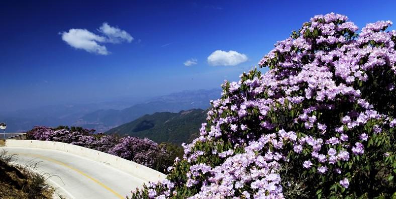 2 Days Kunming Jiaozi Snow Mountain Tour