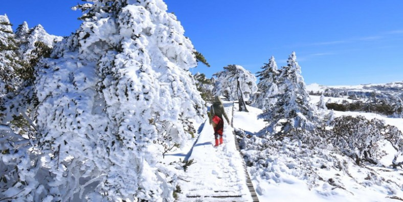 2 Days Jiaozi Snow Mountain Hiking Tour