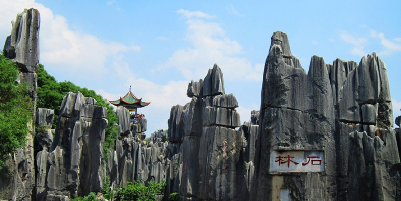 1 Day Kunming Stone Forest Group Tour