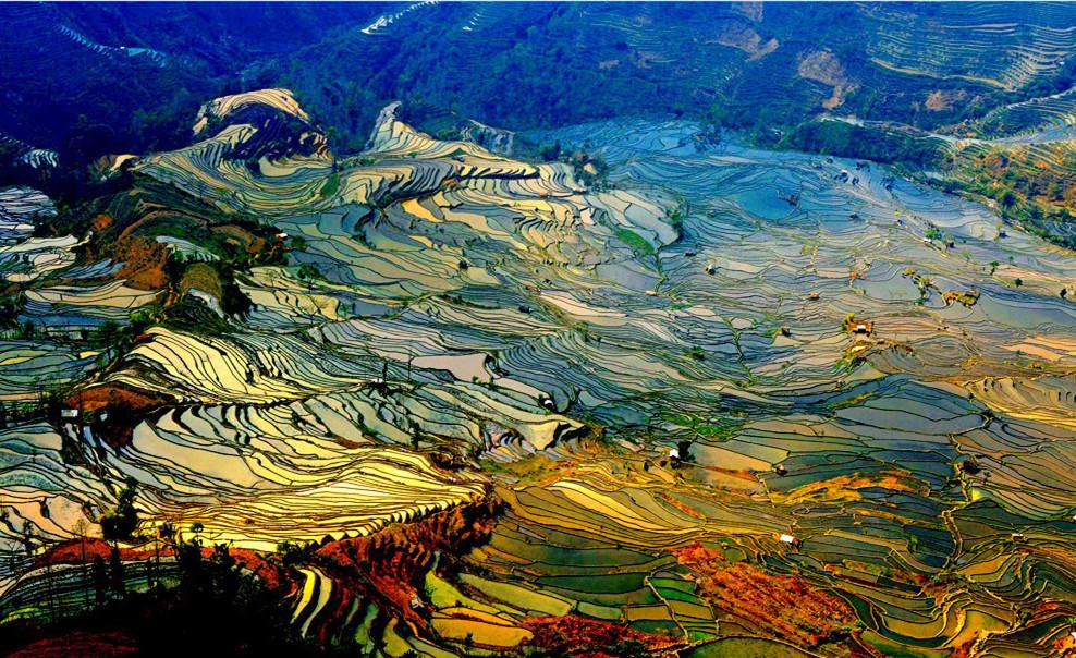 yuanyang-rice-terraces-honghe-01