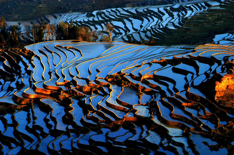 yuanyang-rice-terraces-honghe-03