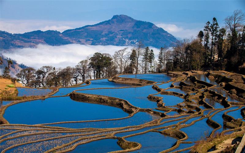 yuanyang-rice-terraces-honghe-04