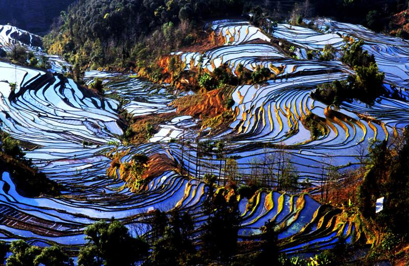 yuanyang-rice-terraces-honghe-05