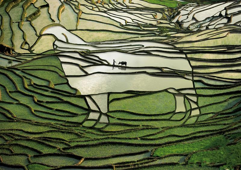 yuanyang-rice-terraces-honghe-08