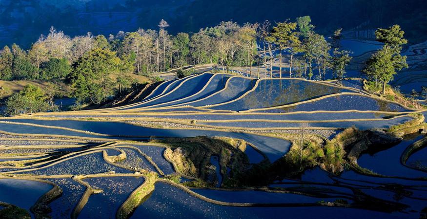 yuanyang-rice-terraces-honghe-10