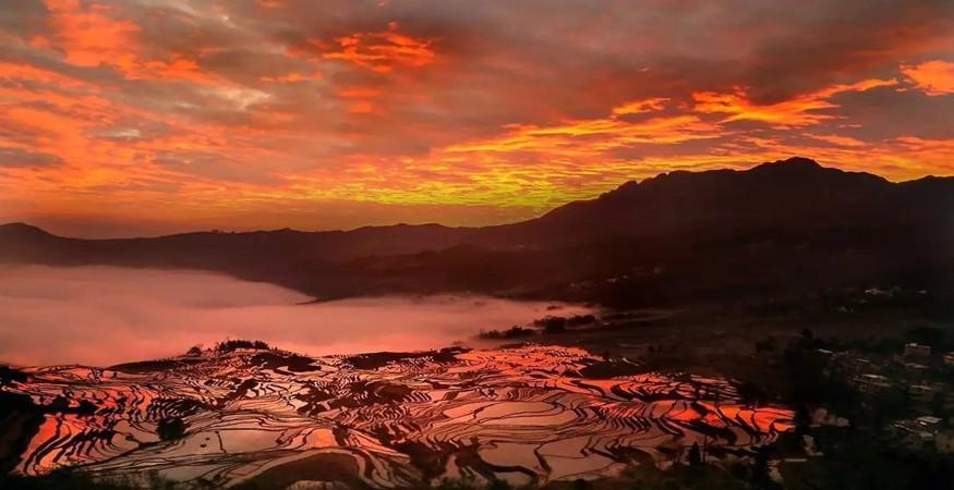 yuanyang-rice-terraces-honghe-14