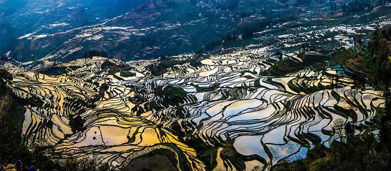yuanyang-rice-terraces-honghe-15