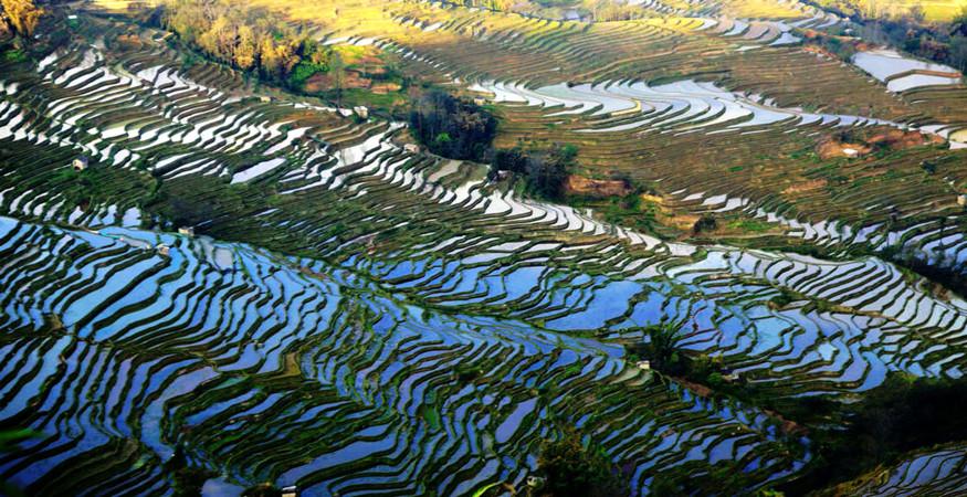 yuanyang-rice-terraces-honghe-16