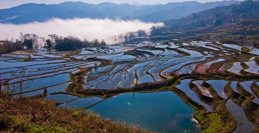 yuanyang-rice-terraces-honghe-19
