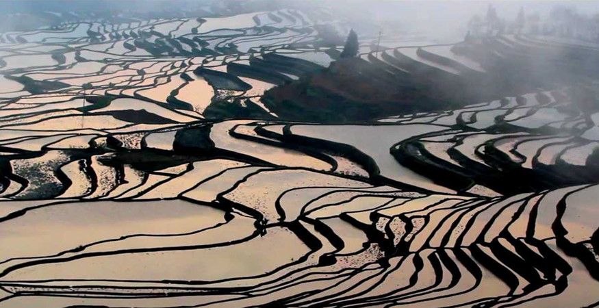 Hani Rice Terraces List in Jinping County, Honghe
