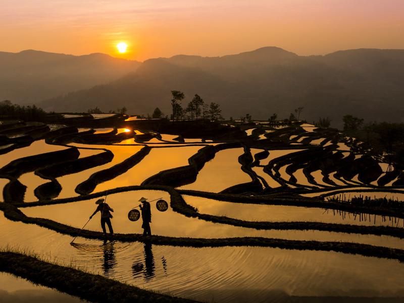 yuanyang-rice-terraces-honghe-23