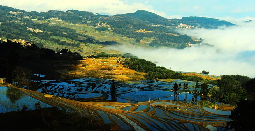 yuanyang-rice-terraces-honghe-26