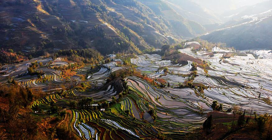 yuanyang-rice-terraces-honghe-32