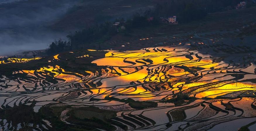 yuanyang-rice-terraces-honghe-37