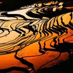 8 Days Deluxe Kunming, Shilin, Mile Jianshui Photo Tour with Yuanyang Rice Terraces and Fuxianhu Lake