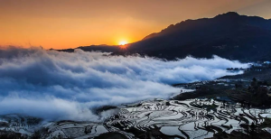Duoyishu Rice Terraces in Yuanyang County,Honghe