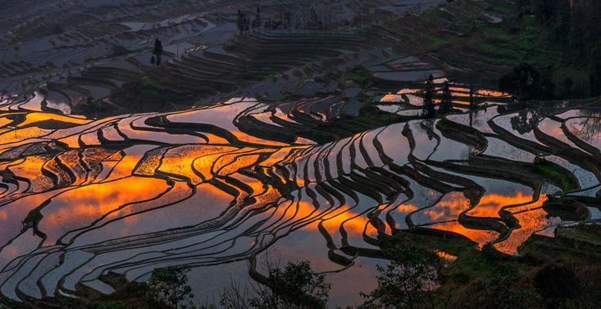 yuanyang-rice-terraces-honghe-46